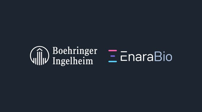 Boehringer Ingelheim & Enara Bio enter Strategic Collaboration & Licensing Agreement to discover novel shared antigens for cancer immunotherapies